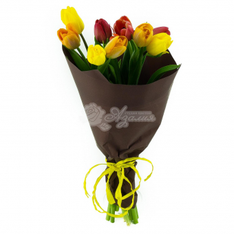 Букет из 9 Тюльпанов в упаковке